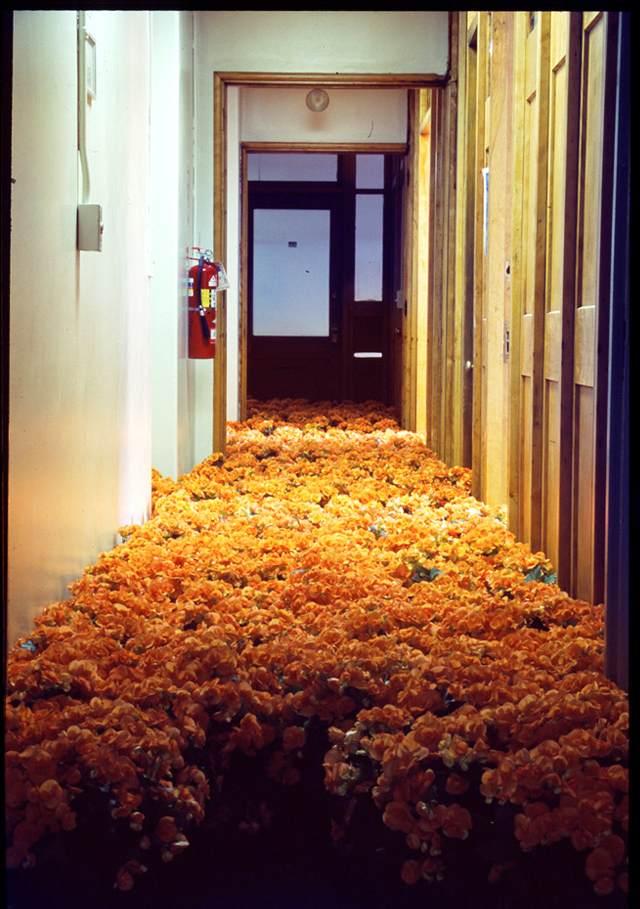 BLOOM-by-Anna-Schuleit-orange-begonias