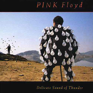 Pink_Floyd_-_Delicate_Sound_of_Thunder
