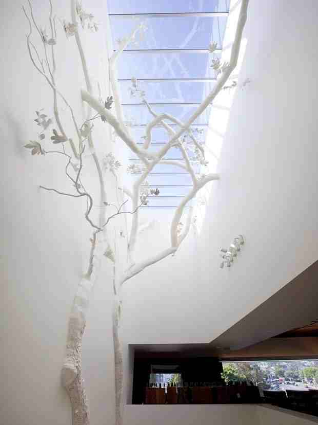 Platanus_Bibliotechalis_Installation_at_West_Hollywood_Library_CubeMe1