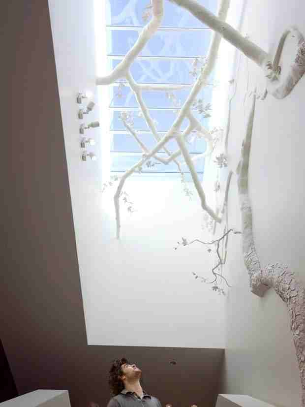Platanus_Bibliotechalis_Installation_at_West_Hollywood_Library_CubeMe3
